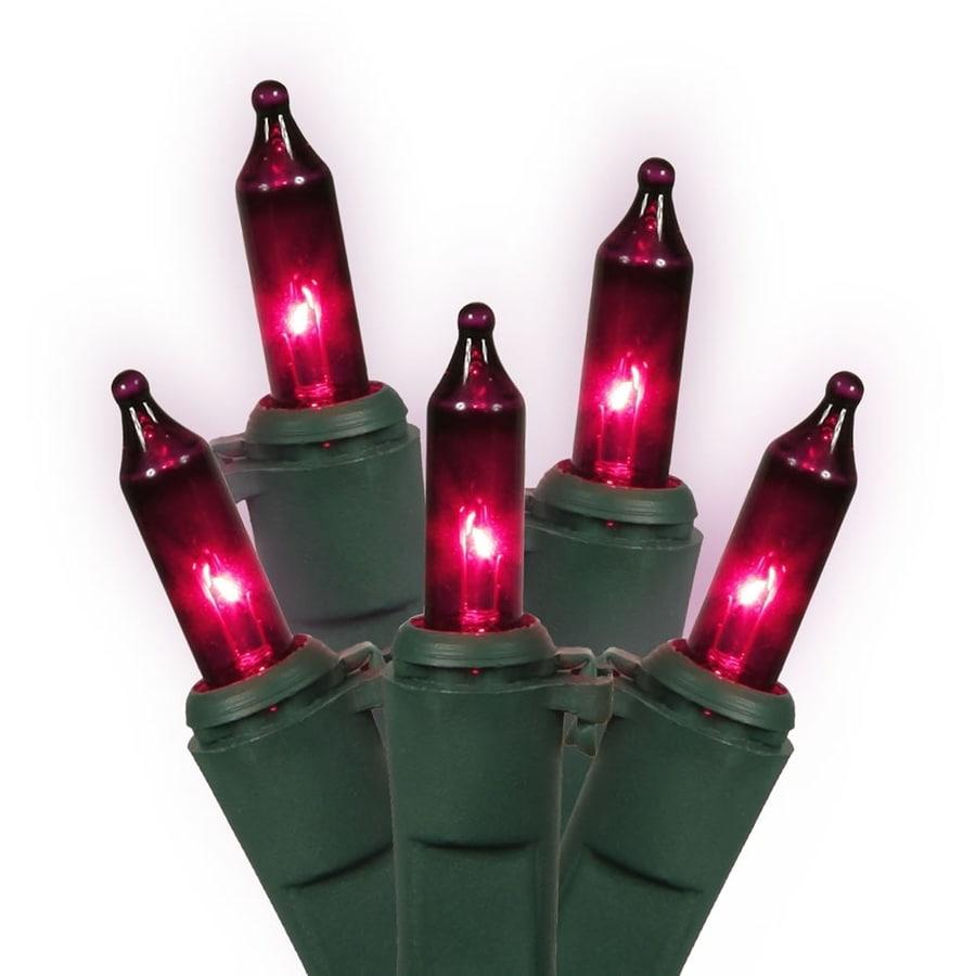Vickerman 100-Count Constant  Purple Mini Incandescent Plug-In Indoor Christmas String Lights