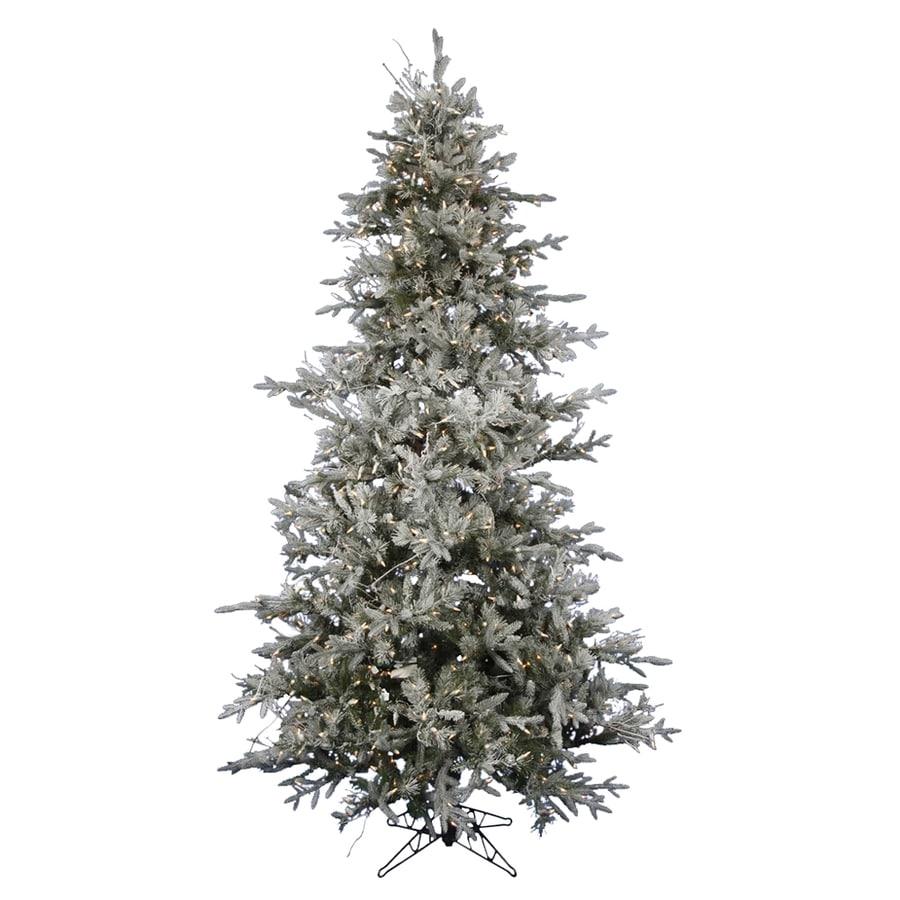 Shop northlight ft in pre lit wistler fir flocked