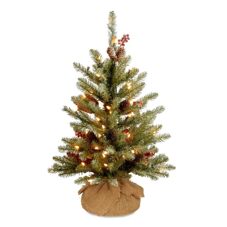 National Tree Company 2-ft Pre-lit Artificial Christmas Tree with 15 ...