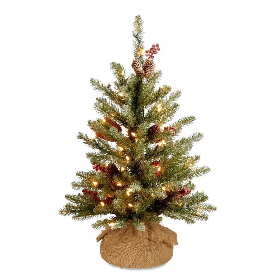 Shop National Tree Company 3-ft Pre-lit Artificial Christmas Tree ...