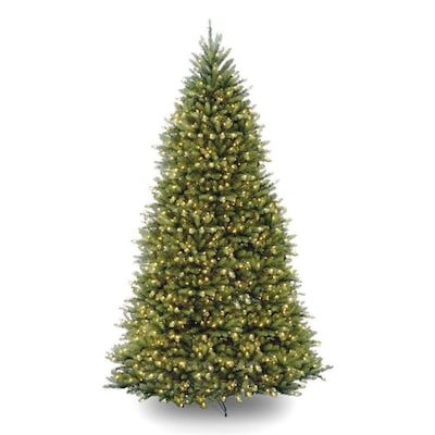 separation shoes ad53b 8d388 National Tree Company 10-ft Pre-lit Artificial Christmas ...