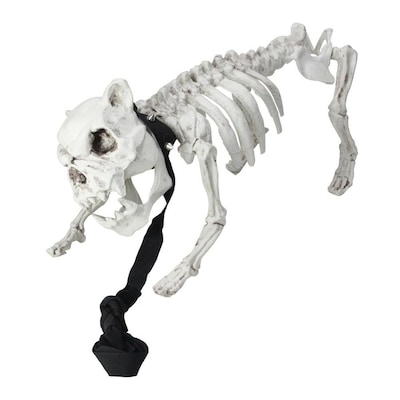 Northlight 16 In Dog Skeleton On Leash Indoor And Outdoor