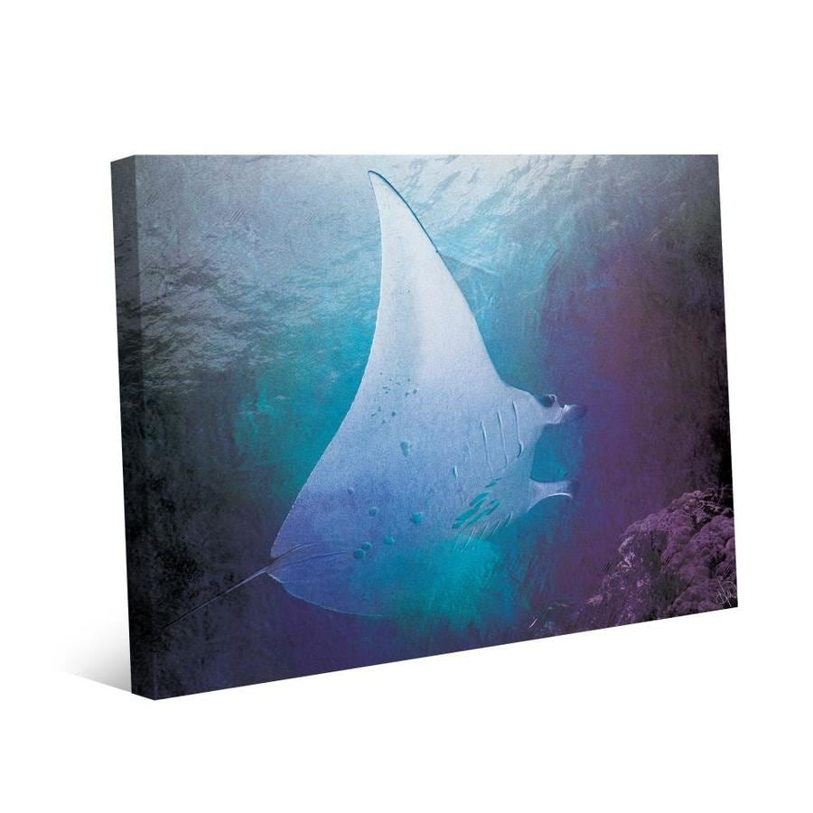 Creative Gallery Indigo Filtered Manta Frameless 20 In H X 16 In W Coastal Canvas Print In The Wall Art Department At Lowes Com