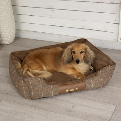 Scruffs Chestnut 100 Polyester Rectangular Dog Bed Large In The Pet Beds Department At Lowes Com