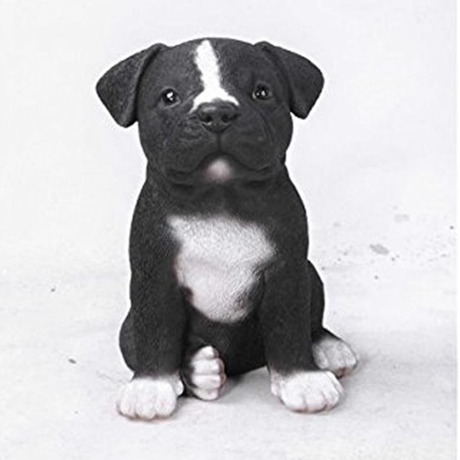 "8/""H Bull Terrier Standing Dog Wearing Sunglasses Statue Figurine Home Decor"
