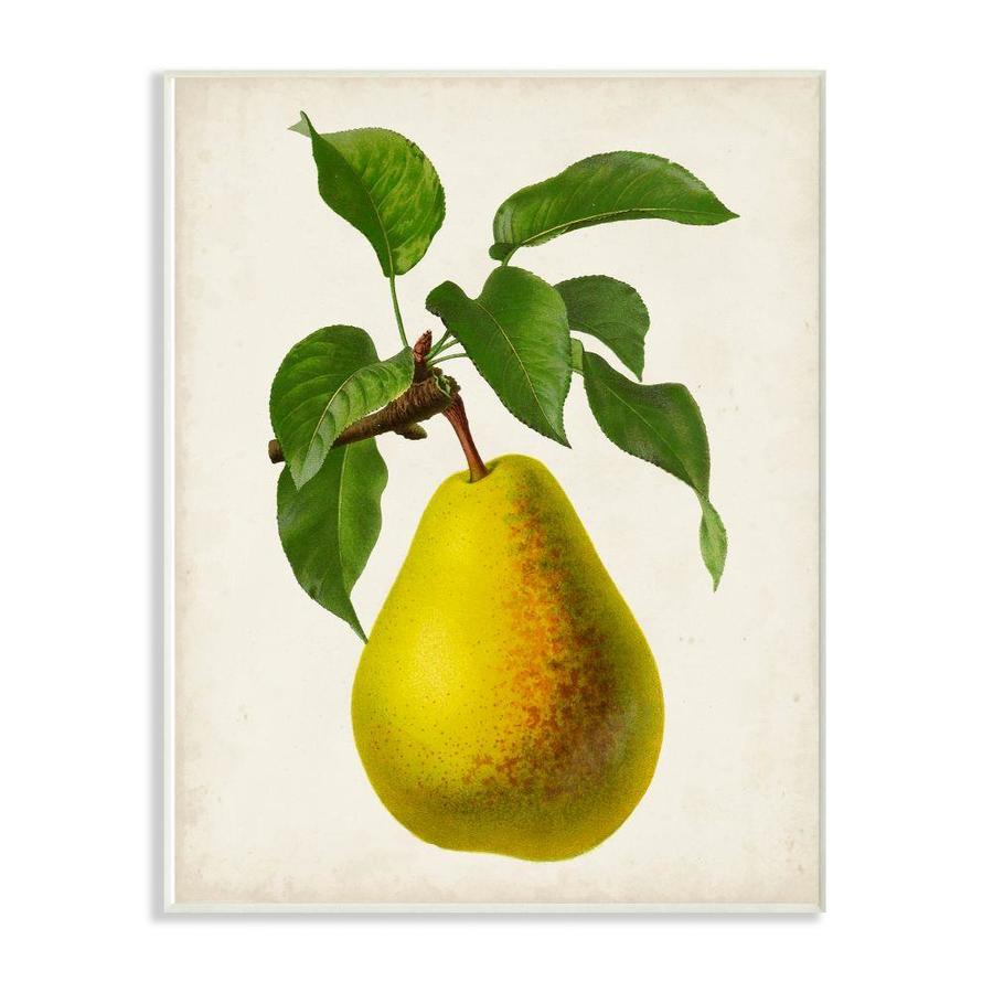 Stupell Industries Vintage Fruit Pear Painting Frameless 15 In H X 10 In W Vintage Retro Wood Print In The Wall Art Department At Lowes Com