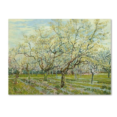 Trademark Fine Art Landscape Framed 14 In H X 19 In W Landscape Canvas Print In The Wall Art Department At Lowes Com