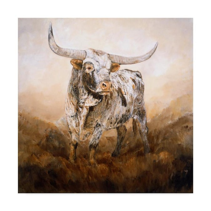 Don/'t Mess with Me Canvas Wall Art Print Cow Home Decor