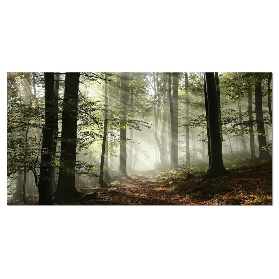 Designart Light In Dense Fall Forest With Fog Landscape Art Print Canvas In The Wall Art Department At Lowes Com