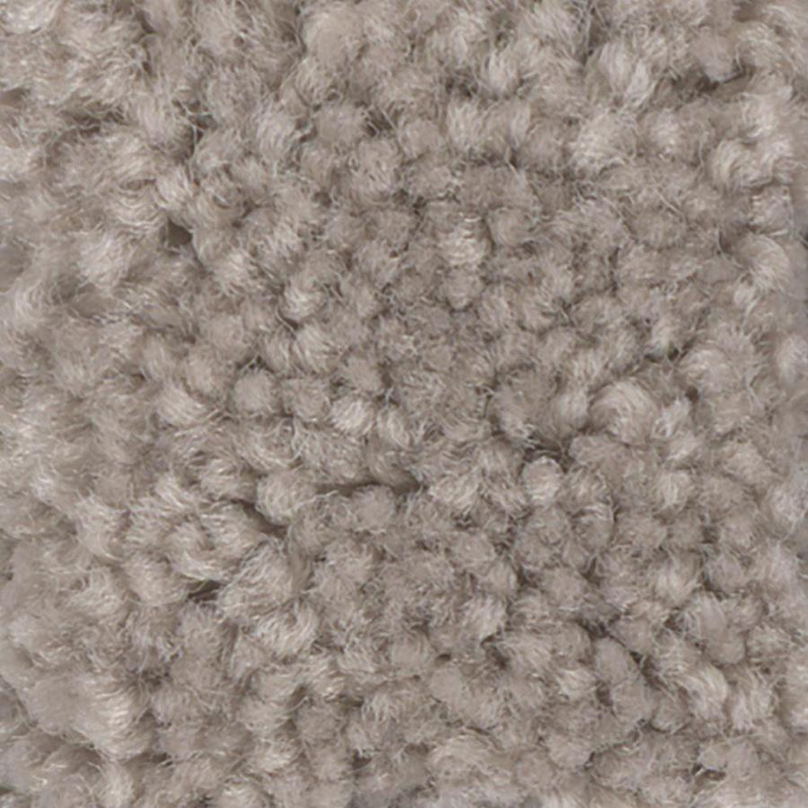 Shaw Intuition I 15-ft W Tumbleweed Textured Interior Carpet