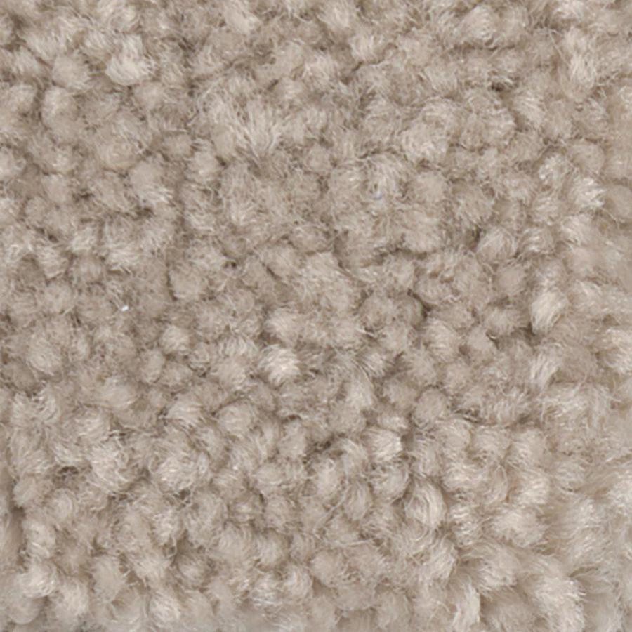 Shaw Intuition II 12-ft W x Cut-to-Length Beaches Textured Interior Carpet
