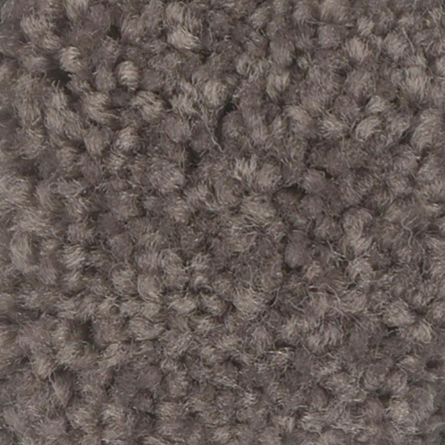 Shaw Intuition III Tree Bark Textured Indoor Carpet