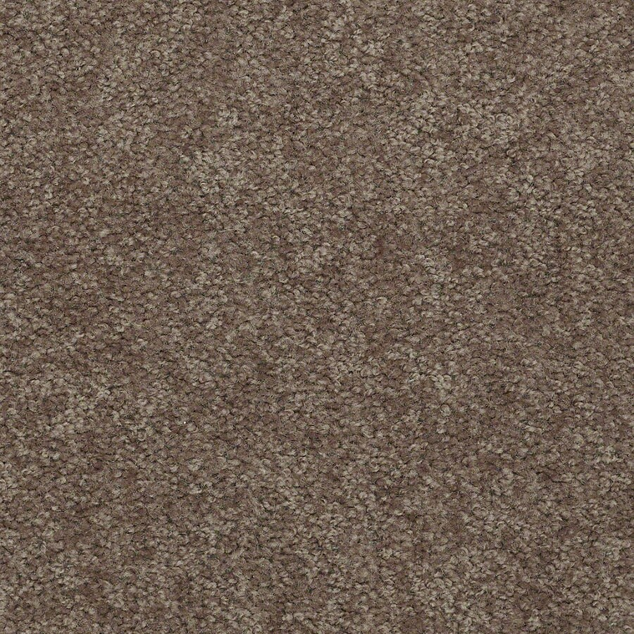 Shaw Stock Driftwood Textured Indoor Carpet