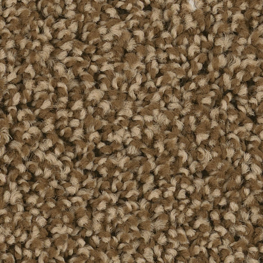 Shaw Charger Rr Mocha Textured Indoor Carpet