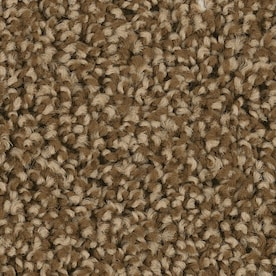 Shaw Carpet At Lowes