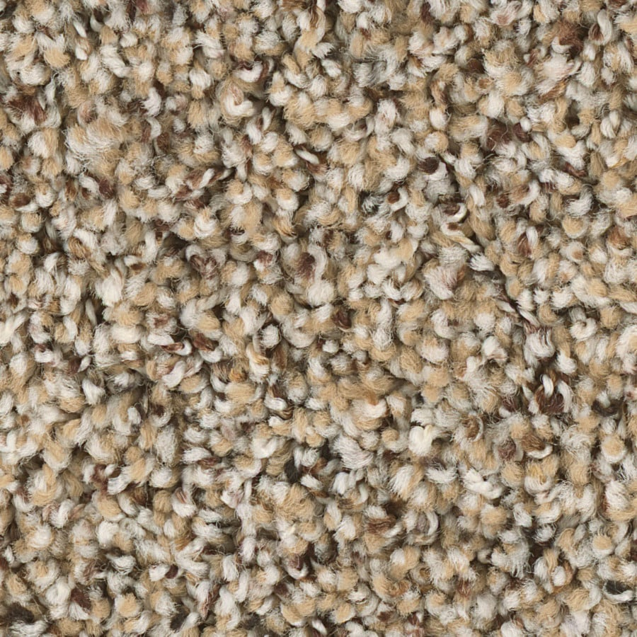 Shop Shaw Keynote Rr Essence Textured Interior Carpet At