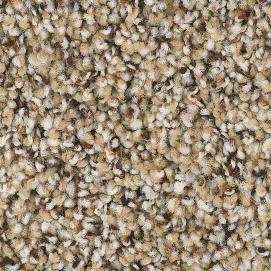 Outdoor-Carpet-Roll-Lowes. Shaw Keynote 12 Ft W X Cut To Length Essence Textured Interior Carpet