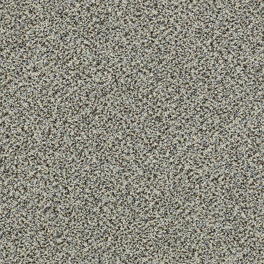 STAINMASTER Petprotect Mineral Bay I 12 Ft Tidal Wave Textured Indoor Carpet