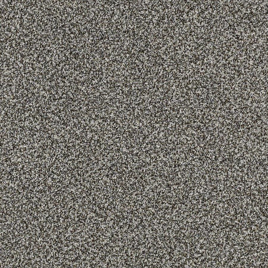STAINMASTER Petprotect Mineral Bay I 15 Ft Whale Song Textured Indoor Carpet