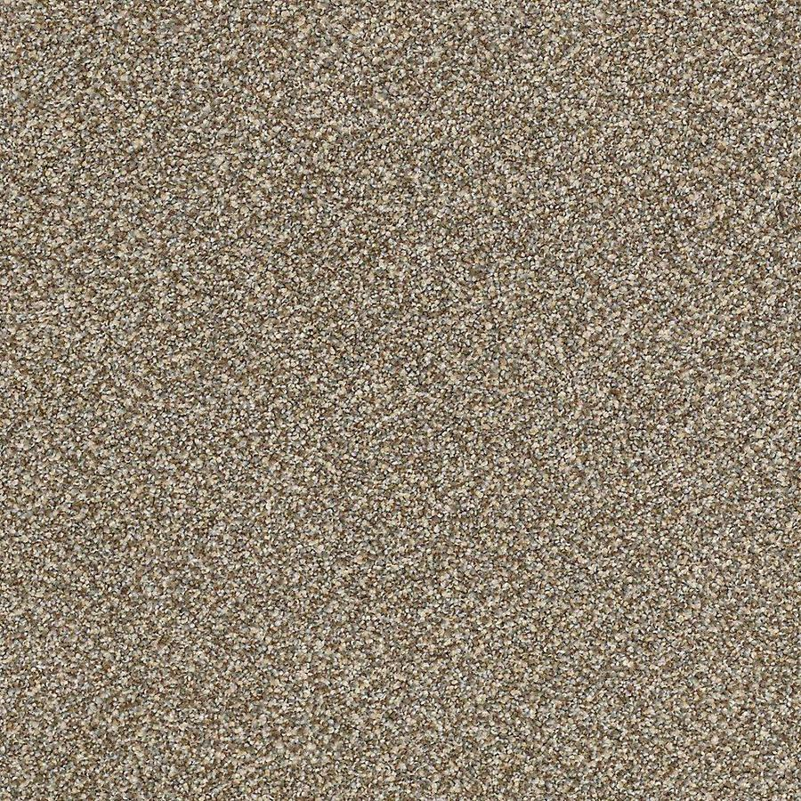 STAINMASTER Petprotect Mineral Bay I Surfboard Textured Indoor Carpet