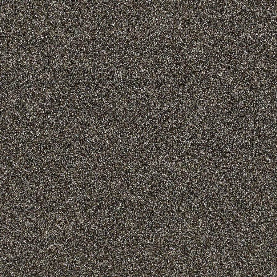 STAINMASTER Petprotect Mineral Bay I 15 Ft Dockside Textured Indoor Carpet