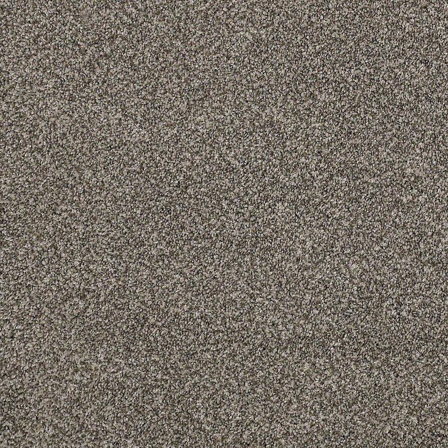 STAINMASTER Petprotect Mineral Bay II Pelican Textured Indoor Carpet