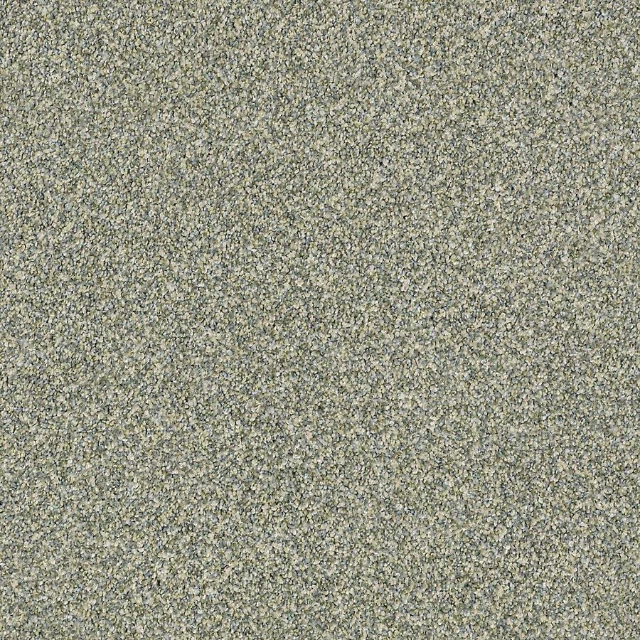 STAINMASTER Petprotect Mineral Bay II Lagoon Textured Interior Carpet