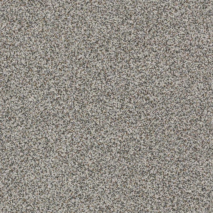 STAINMASTER Petprotect Mineral Bay II Harbor Mist Textured Indoor Carpet