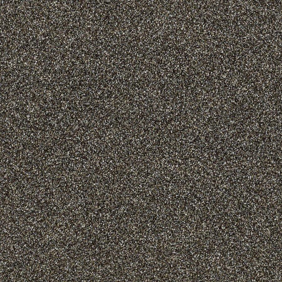 STAINMASTER Petprotect Mineral Bay II Dockside Textured Indoor Carpet