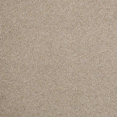 Stainmaster Petprotect Foundry I 12 Ft Textured Interior