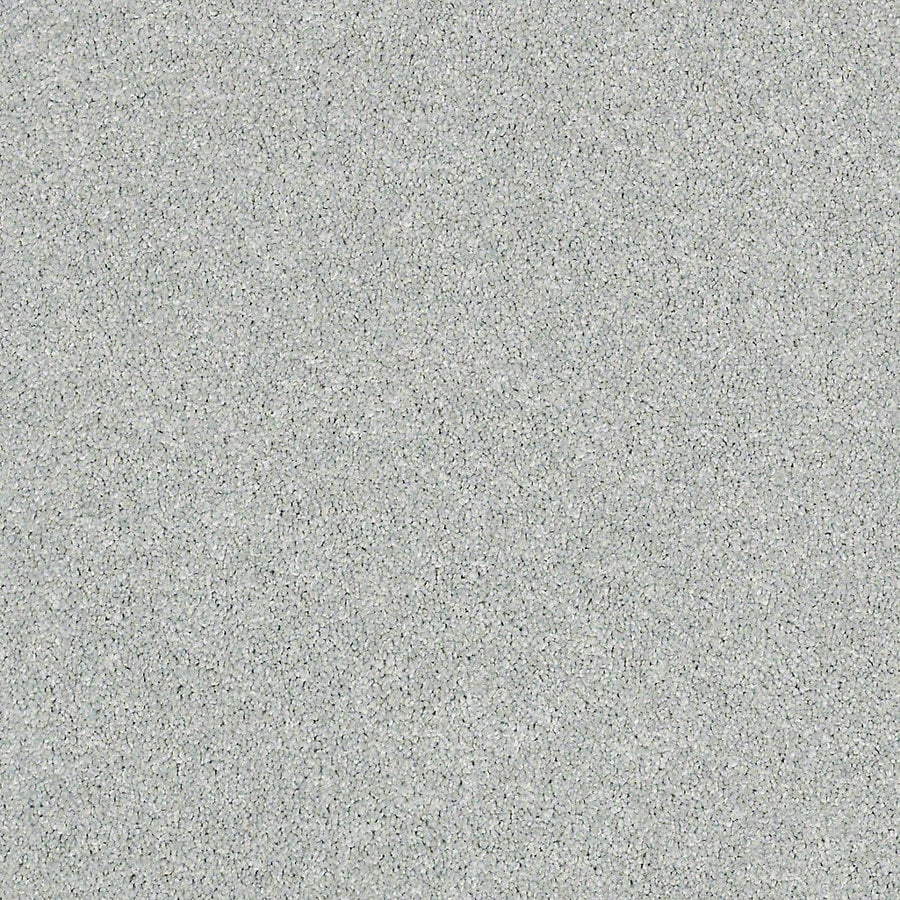STAINMASTER Petprotect Foundry I Blue Ice Textured Interior Carpet