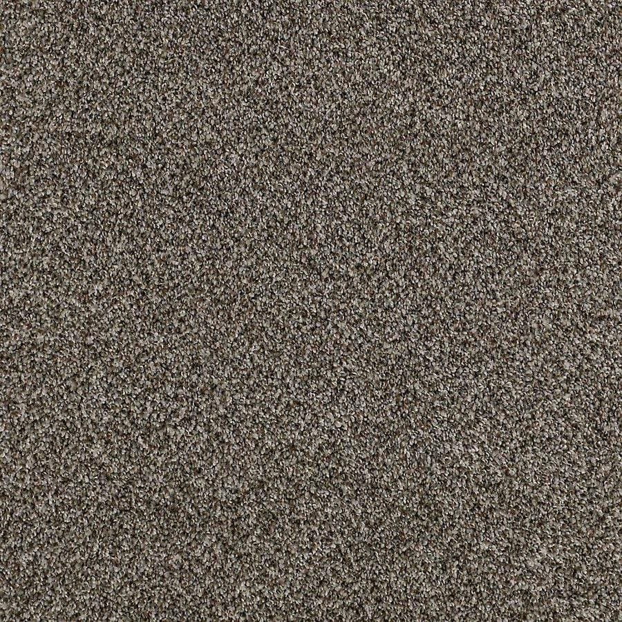 STAINMASTER PetProtect Foundry I 12-ft W Creek Side Textured Interior Carpet