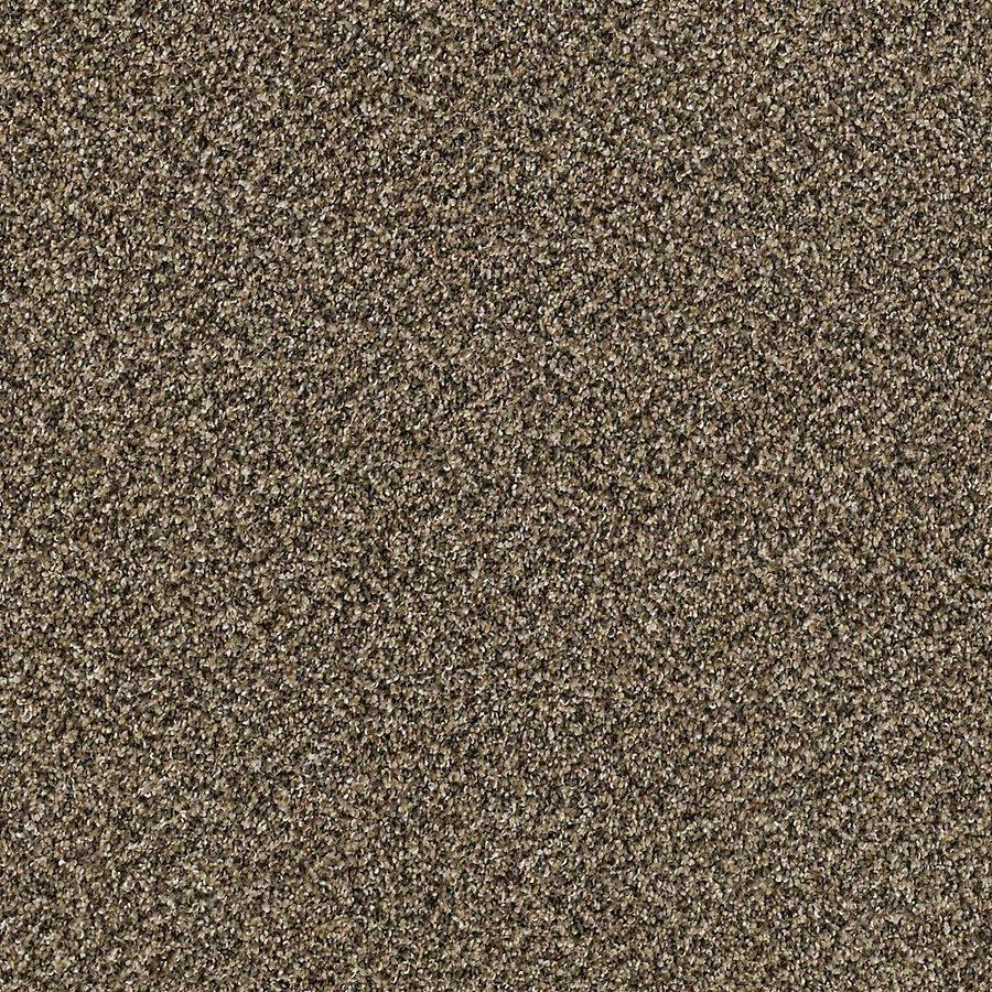 STAINMASTER PetProtect Foundry II Sandalwood Textured Interior Carpet
