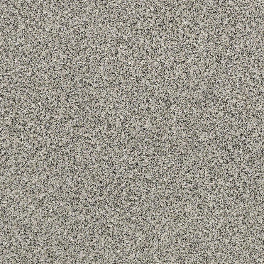 STAINMASTER PetProtect Foundry II Mineral Textured Interior Carpet