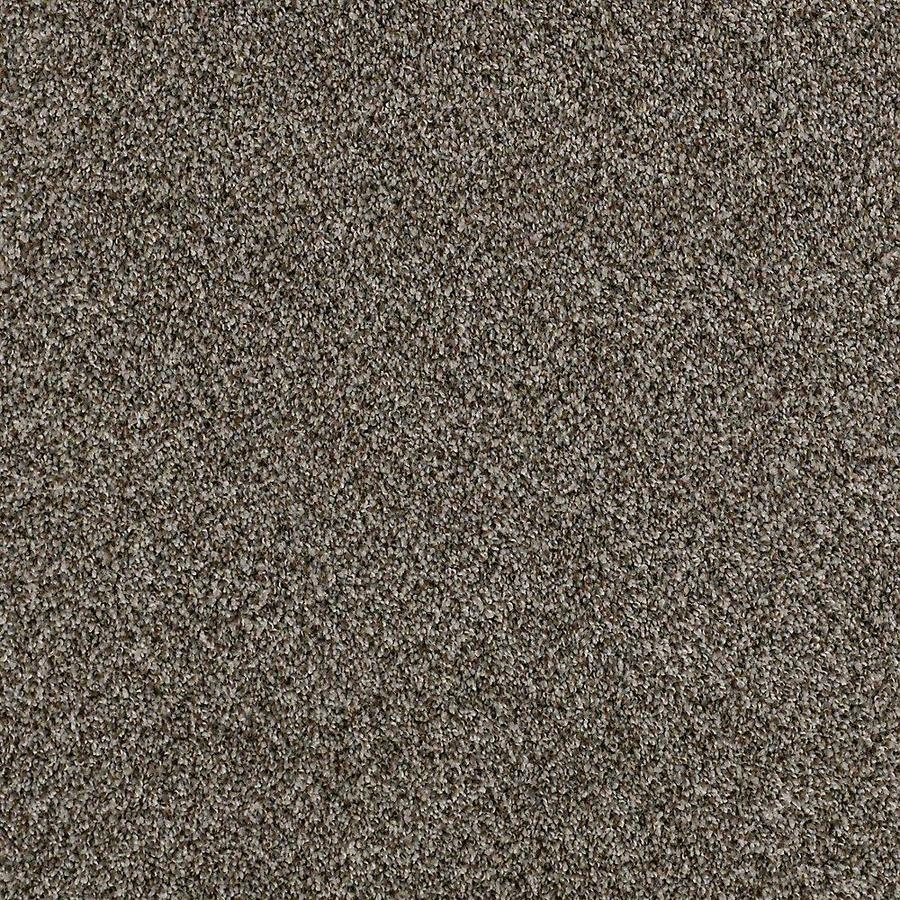 STAINMASTER PetProtect Foundry II Creek Side Textured Interior Carpet