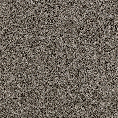 Petprotect Foundry Ii 15 Ft Textured Interior Carpet