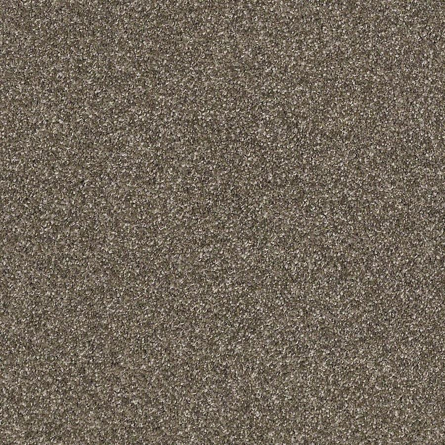 STAINMASTER PetProtect Foundry II Garden Soil Textured Interior Carpet