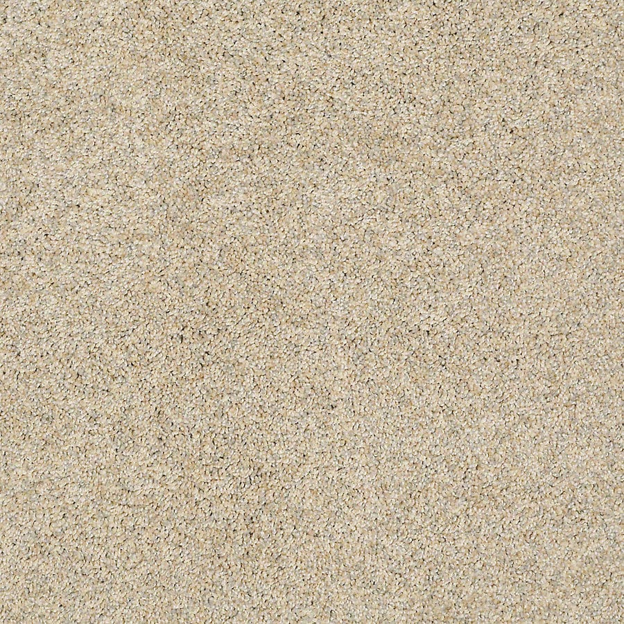 STAINMASTER Petprotect Shameless I Marzipan Textured Interior Carpet