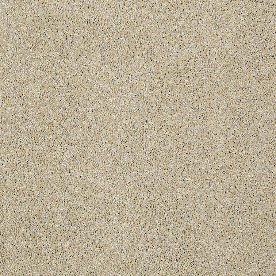 STAINMASTER Petprotect Shameless I Sea Mist Textured Indoor Carpet
