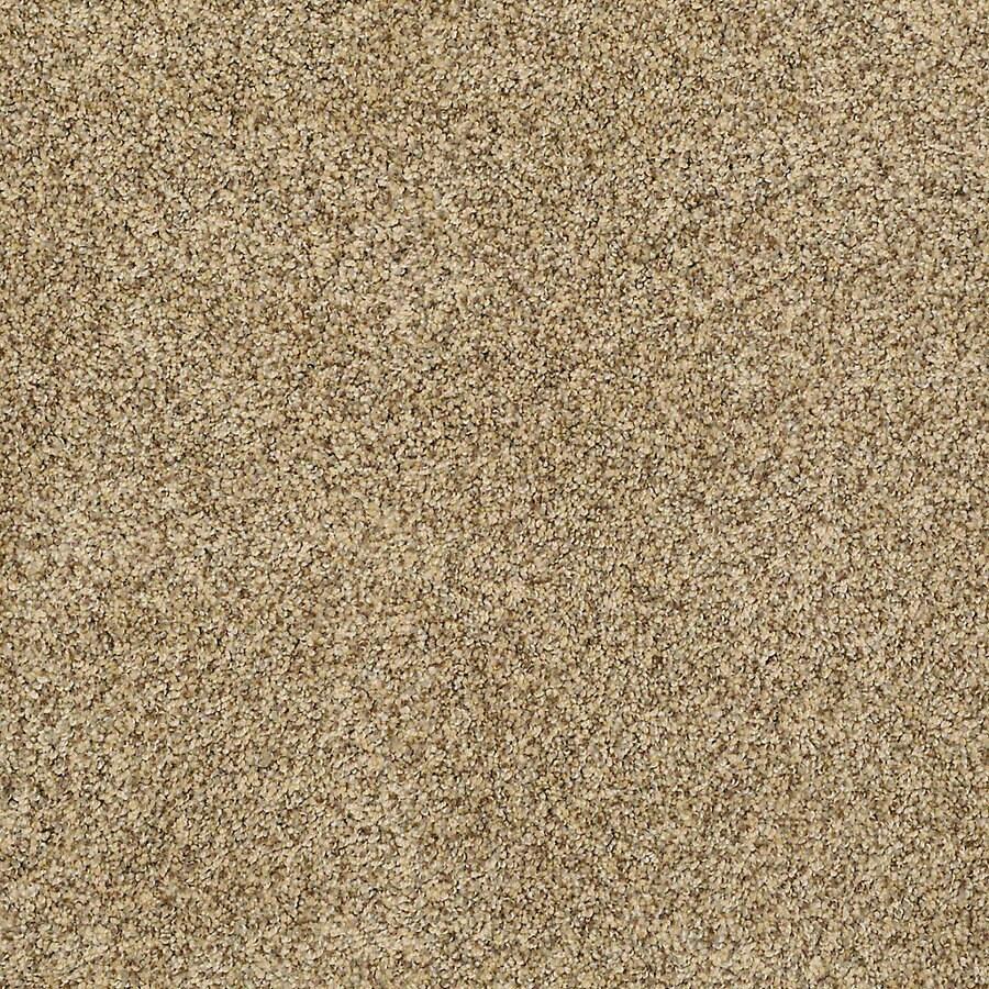 STAINMASTER PetProtect Shameless I 12-ft W x Cut-to-Length Sahara Textured Interior Carpet