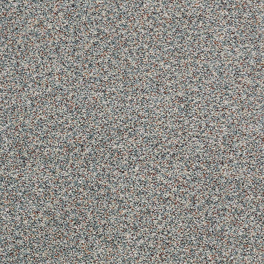 STAINMASTER Petprotect Shameless I Misty Blue Textured Indoor Carpet