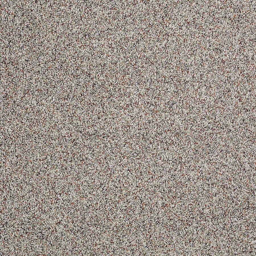 STAINMASTER Petprotect Shameless I Thundercloud Textured Indoor Carpet