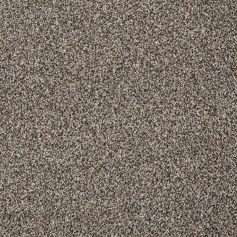 STAINMASTER PetProtect Shameless I 12-ft W x Cut-to-Length Velvet Night Textured Interior Carpet