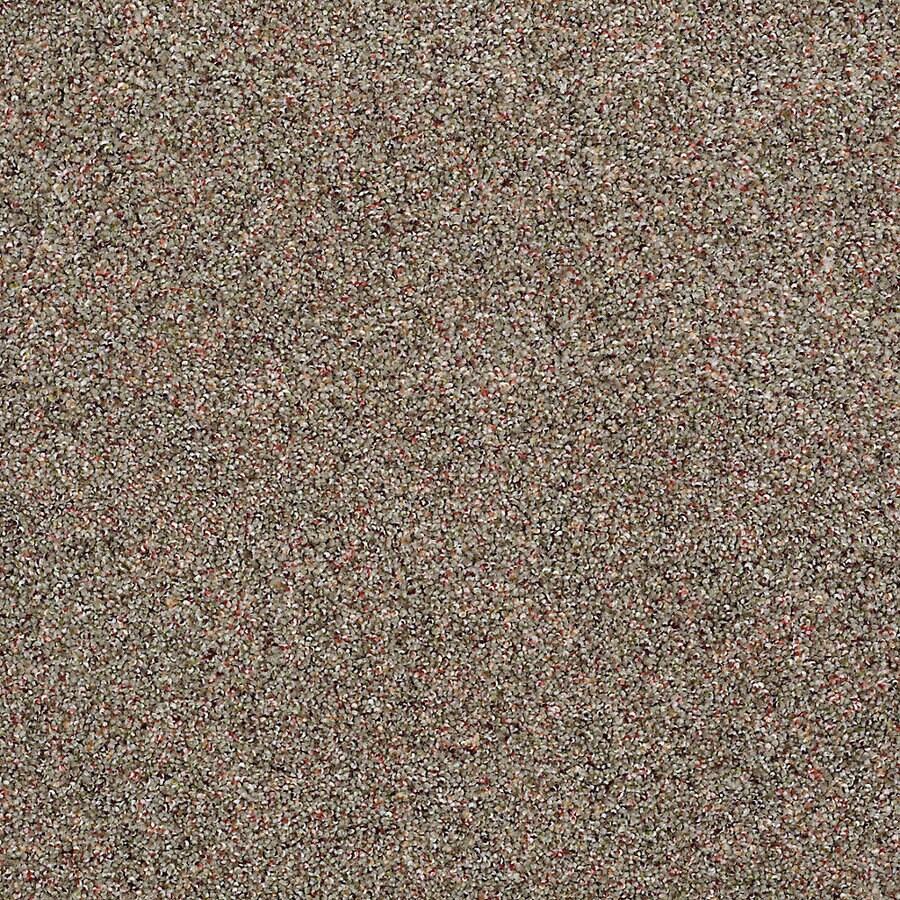 STAINMASTER Petprotect Shameless I El Dorado Textured Indoor Carpet