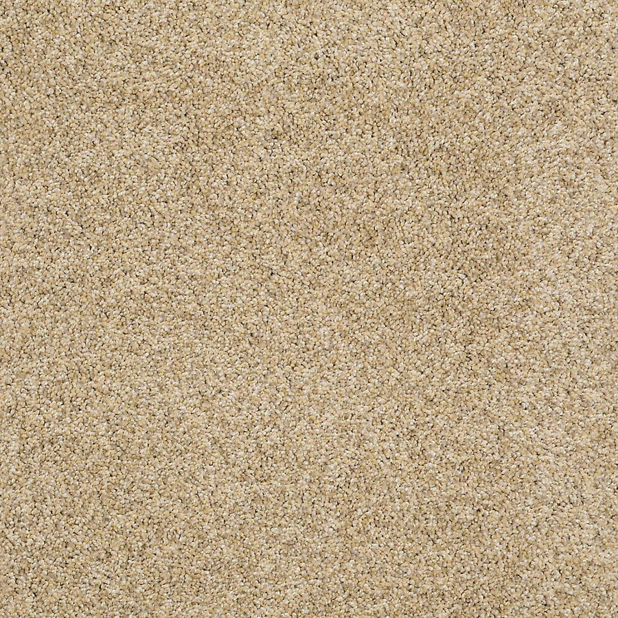 STAINMASTER PetProtect Shameless II 12-ft W x Cut-to-Length Sunrise Textured Interior Carpet