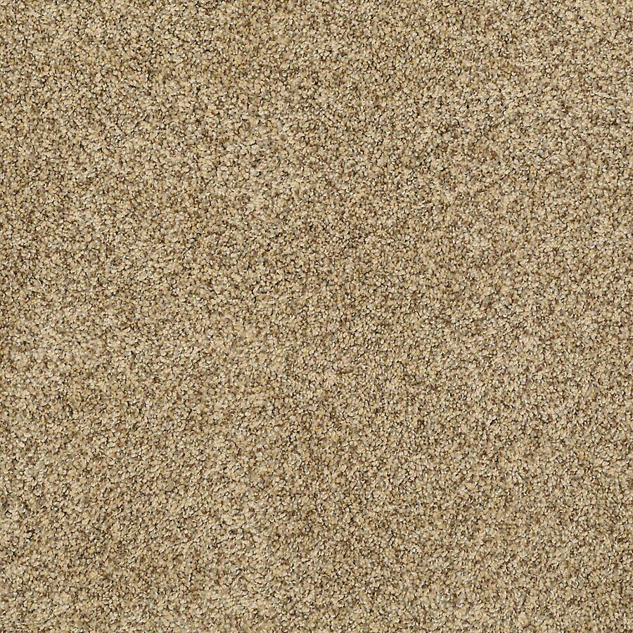 STAINMASTER Petprotect Shameless II Sahara Textured Indoor Carpet