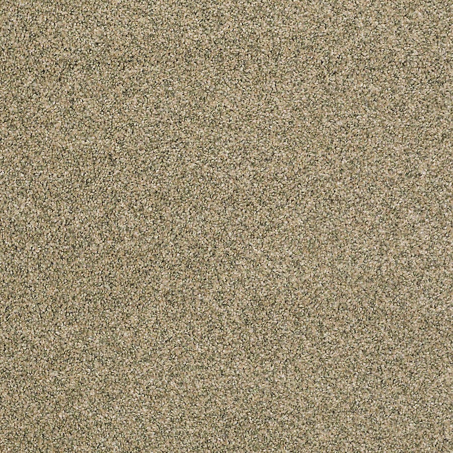STAINMASTER PetProtect Shameless II 12-ft W Raffia Textured Interior Carpet