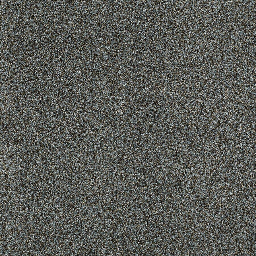 STAINMASTER Petprotect Shameless II Orinoco Textured Indoor Carpet