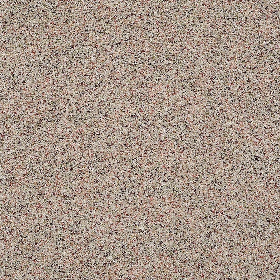STAINMASTER Petprotect Shameless Ii Autumn Morn Textured Indoor Carpet