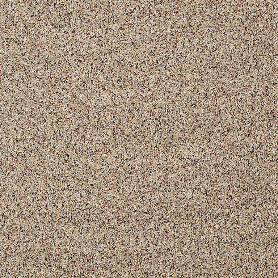 STAINMASTER PetProtect Shameless II Italian Straw Textured Interior Carpet